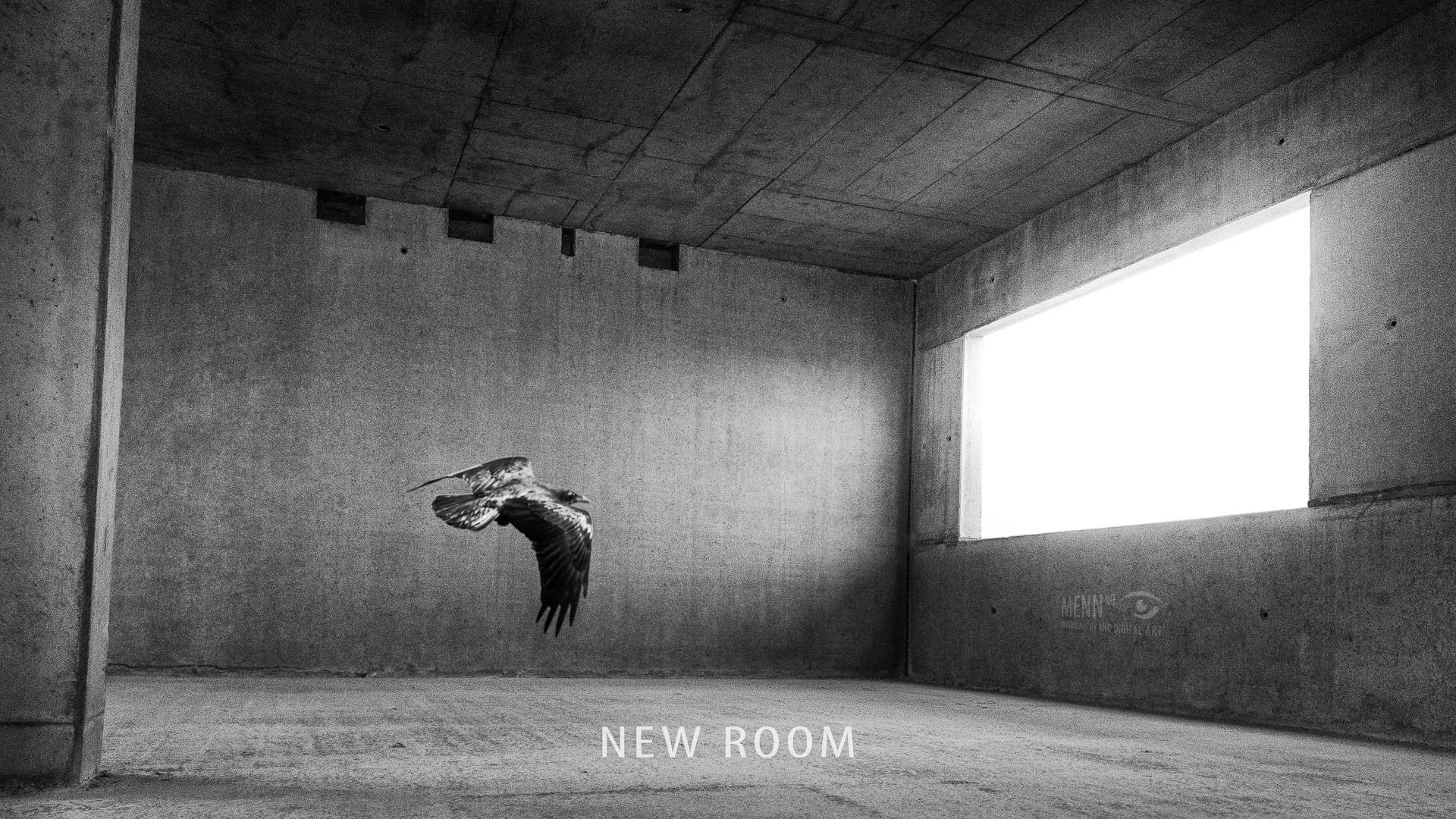 newroom-mennno